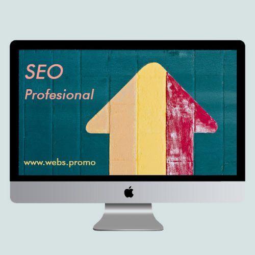 Seo profesional economico contratando posicionamiento web