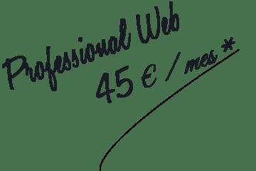 Diseño de pagina web profesional administrada en Tenerife Innobonos 2018